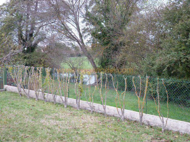 casa L'isle-sur-la-sorgue 169500€ - Fotografia 7