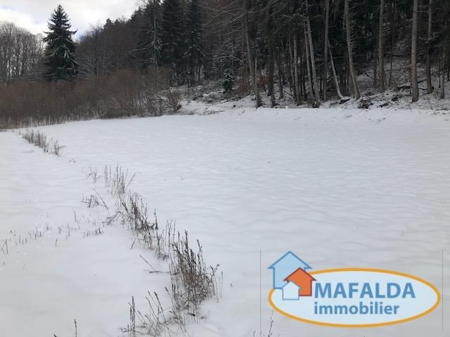 Vente terrain Mont saxonnex 99 000€ - Photo 1