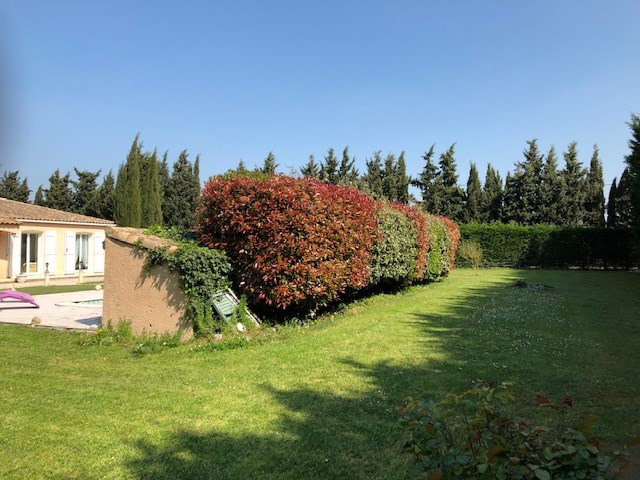 Vente maison / villa Bram 220000€ - Photo 7
