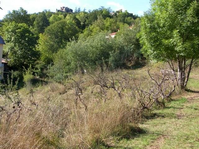Vente terrain Prats de mollo la preste 150000€ - Photo 2