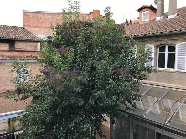 Sale apartment Toulouse 819000€ - Picture 3
