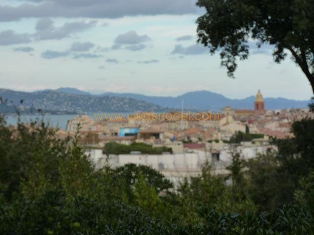 Life annuity apartment Saint-tropez 183 000€ - Picture 2