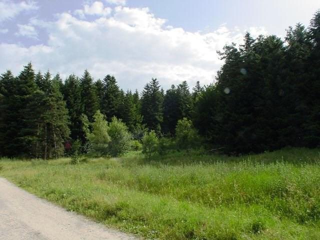 Vente terrain Le chambon sur lignon 29500€ - Photo 1