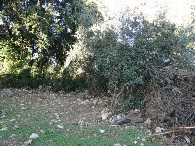Venta  terreno Cournonsec 180000€ - Fotografía 4