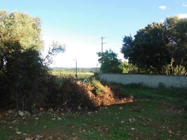 Verkoop  stukken grond Cournonsec 180000€ - Foto 1