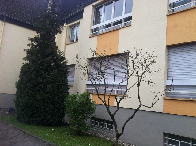 Sale apartment Strasbourg 338 000€ - Picture 3