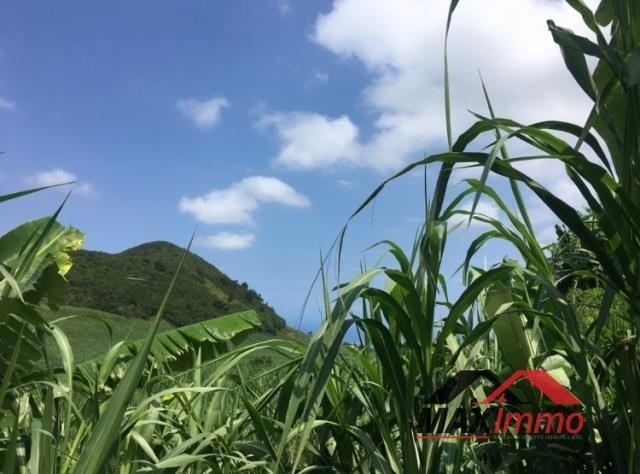 Vente terrain Petite ile 96500€ - Photo 3