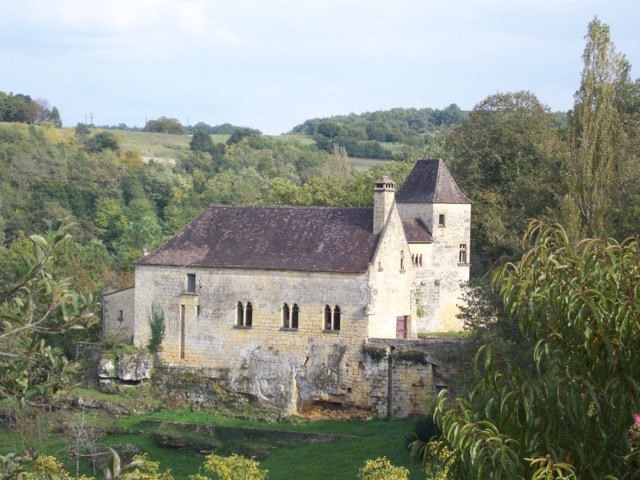Deluxe sale chateau Saint-cyprien 997500€ - Picture 2
