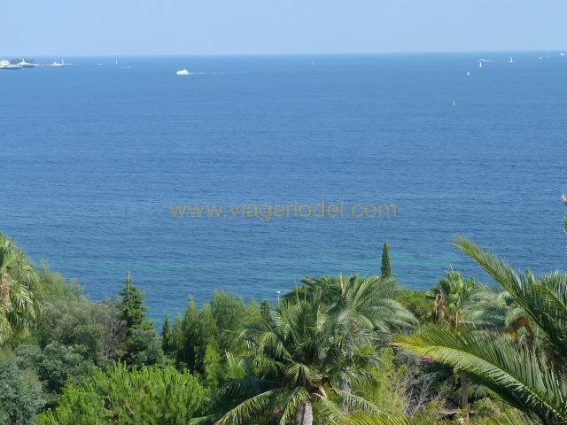Viager appartement Golfe-juan 230 000€ - Photo 3