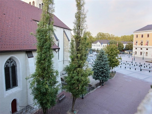 Location appartement Annecy 1020€ CC - Photo 1