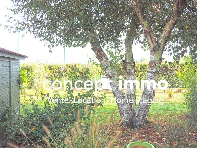 Vente maison / villa Cazaux 282000€ - Photo 10