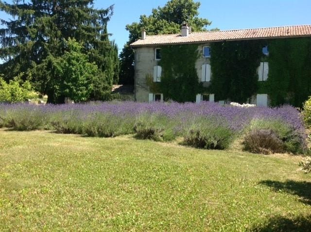 Rental house / villa Chabeuil 1500€ CC - Picture 2