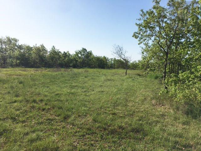 Vendita terreno Andillac 55000€ - Fotografia 4