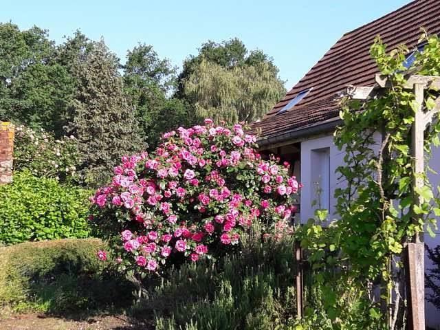 Sale house / villa Branges 269000€ - Picture 4