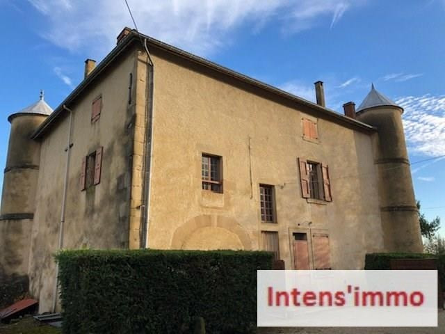 Vente de prestige château Romans sur isere 700000€ - Photo 3