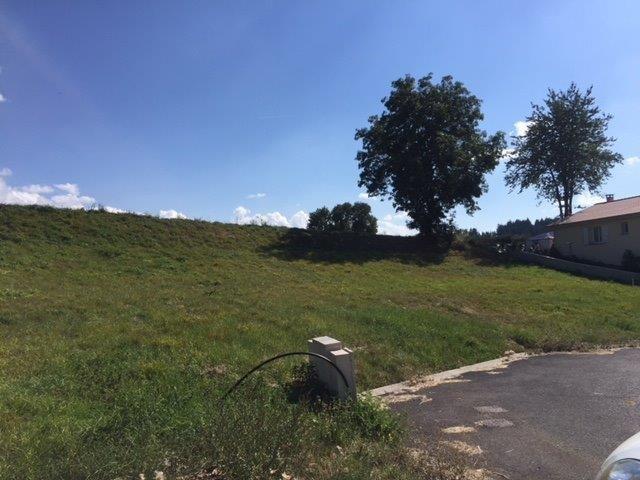 Vente terrain Sainte-sigolene 53000€ - Photo 4