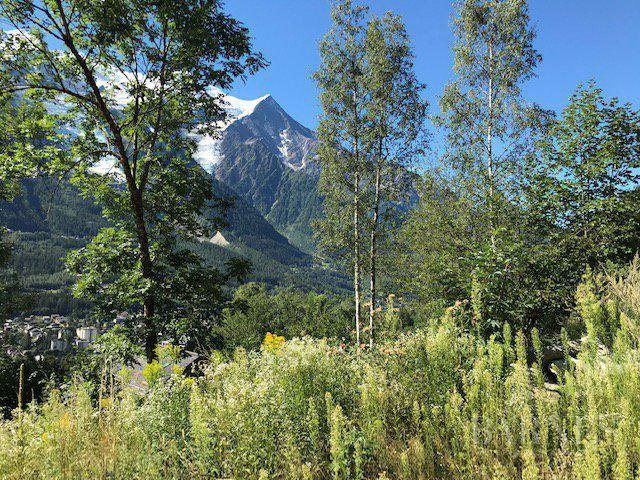 Vente de prestige terrain Chamonix-mont-blanc 3058000€ - Photo 3