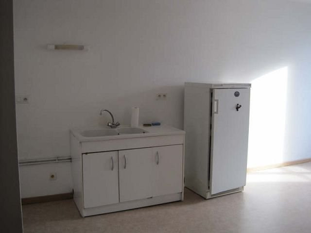 Location appartement Chateauneuf de galaure 430€ +CH - Photo 2