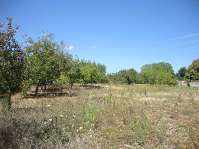 Vente terrain Loulay 17 250€ - Photo 1