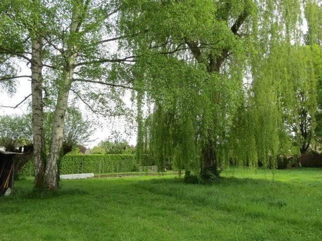 Verkoop  huis Epernon 229000€ - Foto 2