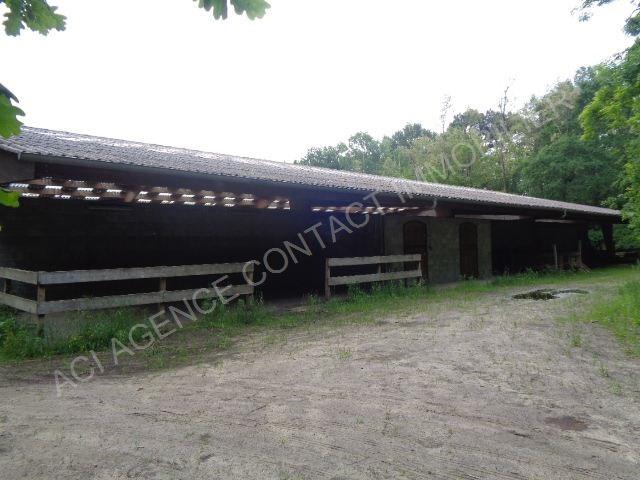 Sale house / villa Mont de marsan 304500€ - Picture 3