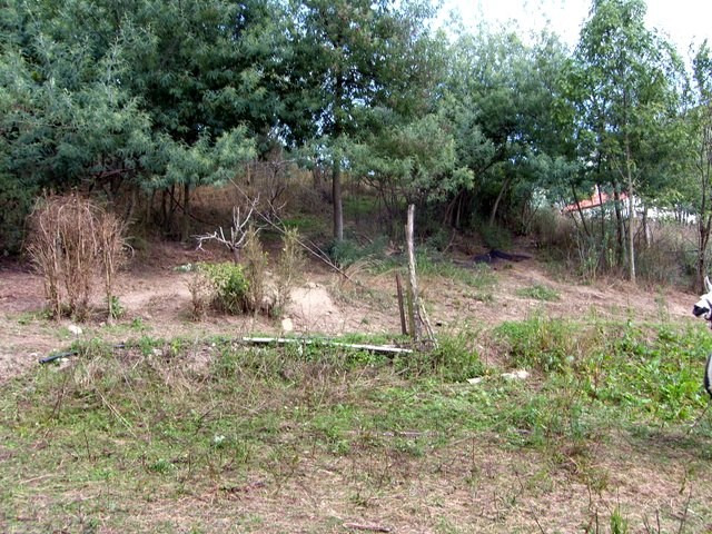 Vente terrain Prats de mollo la preste 150000€ - Photo 7