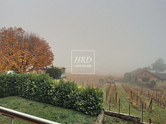 Vente maison / villa Mittelbergheim 490000€ - Photo 2