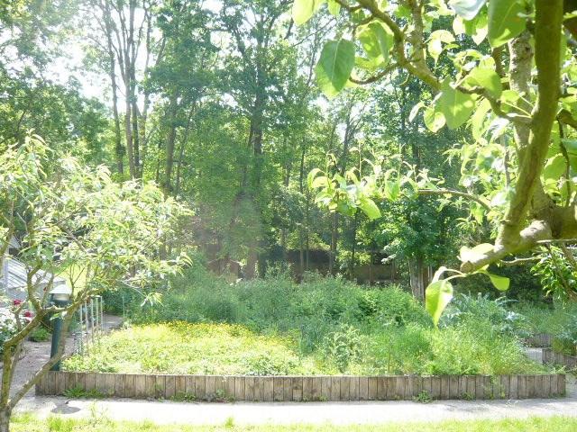 Vente terrain Etiolles 210000€ - Photo 1