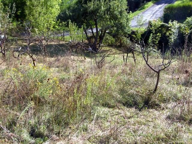 Vente terrain Prats de mollo la preste 150000€ - Photo 4