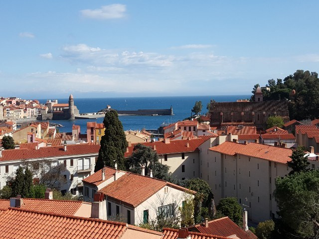 Vacation rental apartment Collioure 443€ - Picture 1