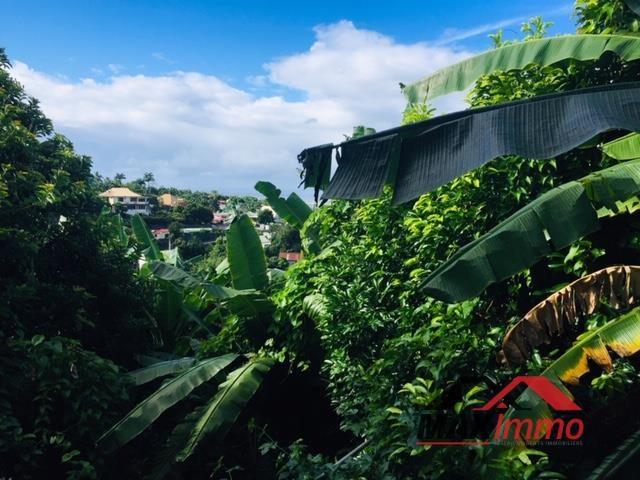 Vente de prestige maison / villa La riviere 662500€ - Photo 13