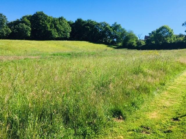 Vente terrain Garlin 54000€ - Photo 1