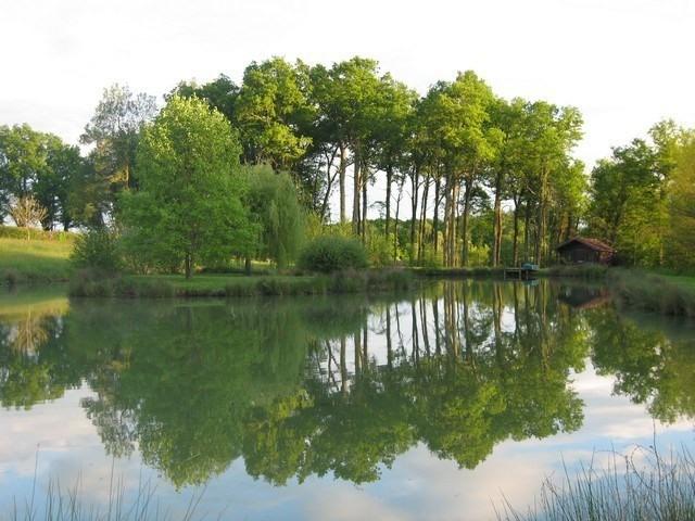 Deluxe sale house / villa Louhans 15 minutes 397000€ - Picture 4