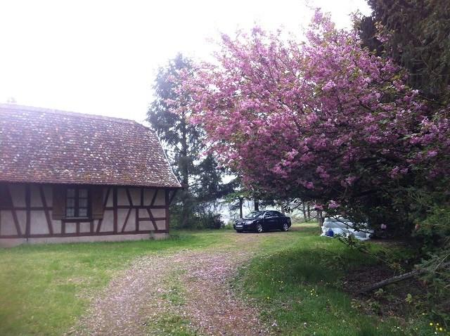 Vente maison / villa Wimmenau 110000€ - Photo 8
