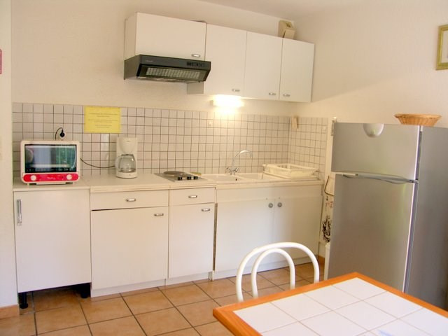 Location vacances appartement Prats de mollo la preste 480€ - Photo 3