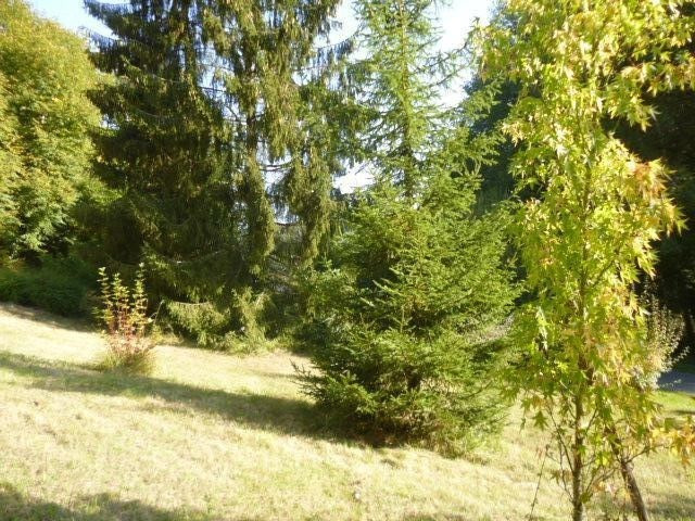 Sale house / villa Lavardin 149 990€ - Picture 3