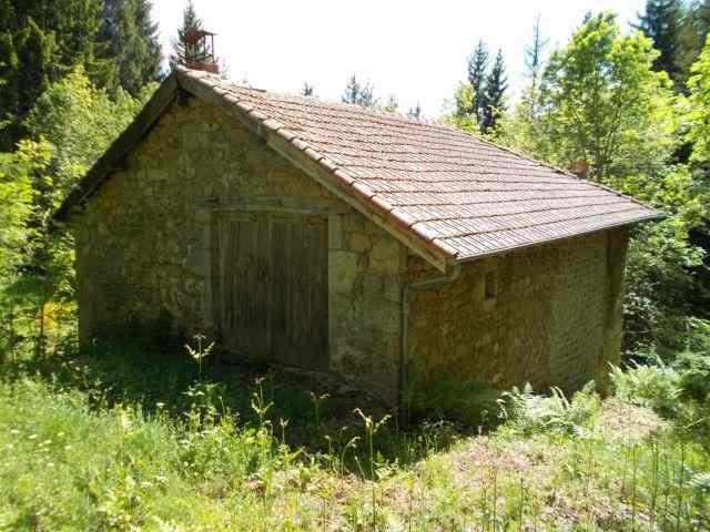 Revenda casa Saint-antheme 56000€ - Fotografia 4