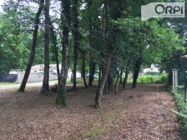 Vente terrain La tremblade 96 800€ - Photo 3