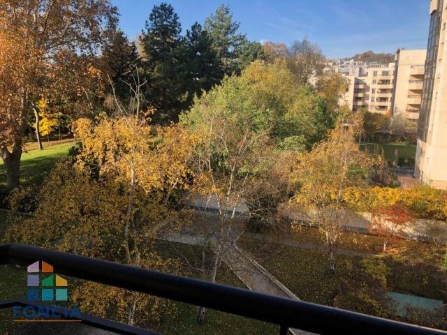 Vente appartement Suresnes 550000€ - Photo 12