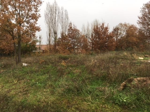 Vente terrain Montauban 81 000€ - Photo 3