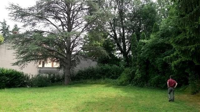 Location maison / villa Saint cyr au mont d'or 1717€ CC - Photo 2