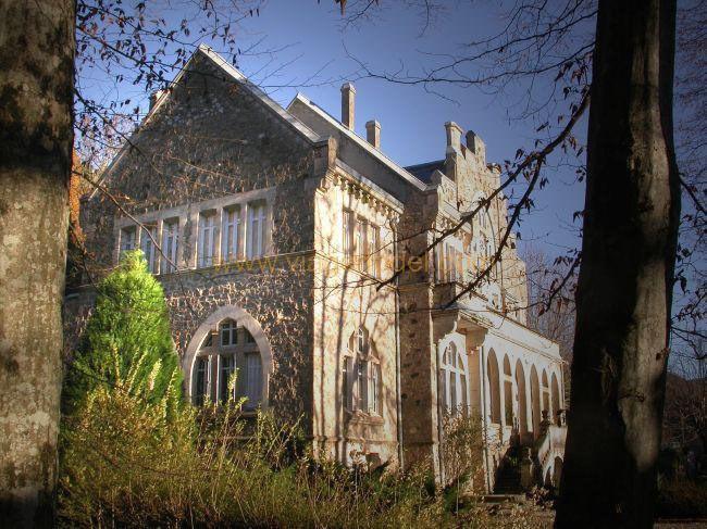 Lijfrente  kasteel Alzon 395000€ - Foto 2