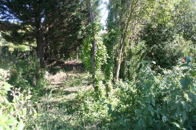 Sale site Soisy-sous-montmorency 362 250€ - Picture 2