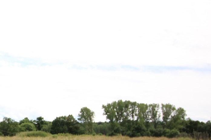 Vente terrain La tour du pin 136000€ - Photo 2