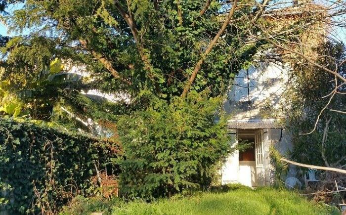 Vente maison / villa Saint-fort-sur-gironde 83000€ - Photo 1