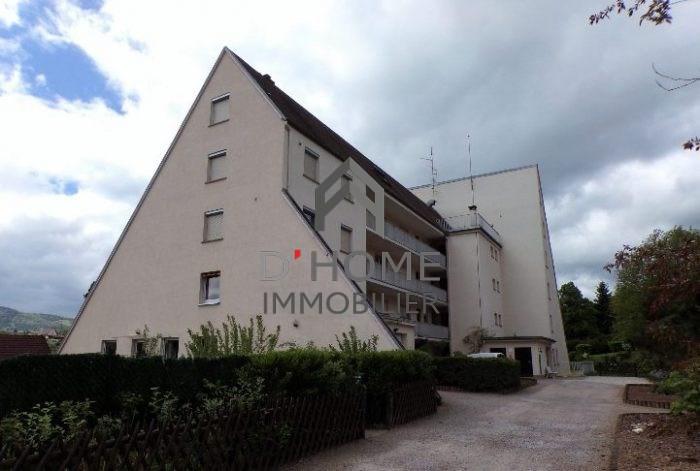 Vendita appartamento Lutzelhouse 76000€ - Fotografia 4