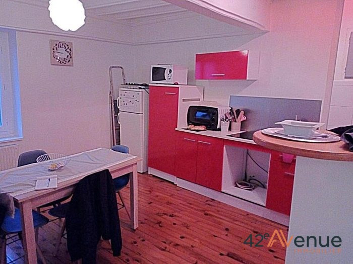 Verkauf mietshaus St galmier 169000€ - Fotografie 2