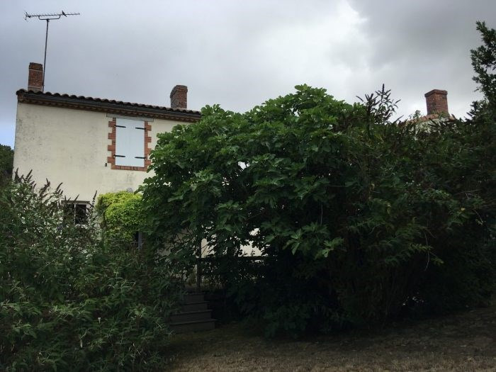 Investment property house / villa Nesmy 173 400€ - Picture 2