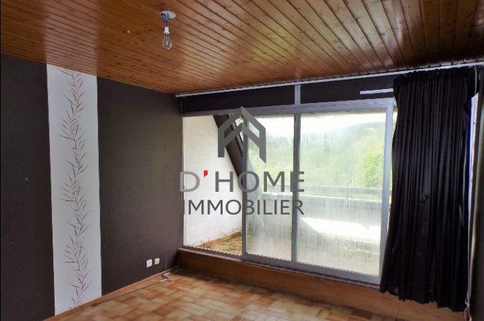 Vendita appartamento Lutzelhouse 76000€ - Fotografia 5
