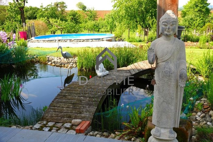 Revenda residencial de prestígio casa Hochfelden 577000€ - Fotografia 3